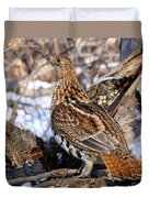 Ruffed Grouse On Alert Duvet Cover