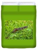 Rufous Garden Slug Duvet Cover