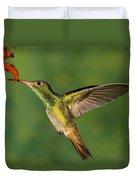 Rufous Hummingbird Feeding Duvet Cover