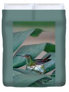 Rufous-tailed Hummingbird On Nest Duvet Cover