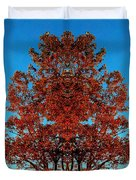 Rust And Sky 2 - Abstract Art Photo Duvet Cover