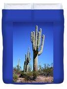Saguaro At The Saguaro National Park Duvet Cover
