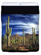 Saguaro Cactuses In Saguaro National Park Duvet Cover
