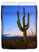 Saguaro Dusk Duvet Cover by Mike  Dawson