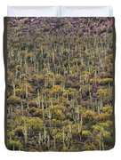 Saguaro Forest At The Foot Of Four Peaks Duvet Cover