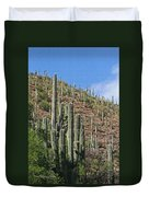 Saguaro Forest In The Superstitions Duvet Cover
