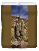 Saguaro Of Many Arms Duvet Cover