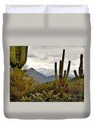 Saguaro Sentinels Duvet Cover