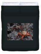Sally Light Foot Crabs Galapagos Duvet Cover