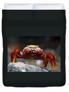 Sally Lightfoot Crab Galapagos Duvet Cover