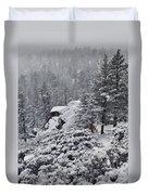 San Jacinto December Wilderness Duvet Cover