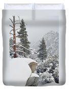 San Jacinto Winter Wilderness Duvet Cover
