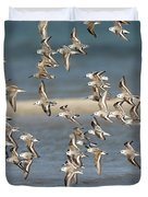 Sanderlings And Dunlins In Flight Duvet Cover