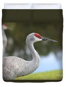 Sandhill And Friend Duvet Cover