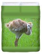 Sandhill Crane Chick I Duvet Cover