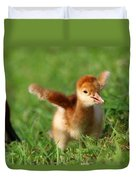Sandhill Crane Hatch Day Duvet Cover