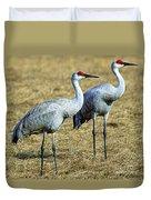 Sandhill Crane Pair Duvet Cover