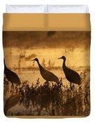 Sandhill Crane Trio At Sunrise Bosque Duvet Cover