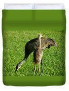 Sandhill Crane With Chick II Duvet Cover