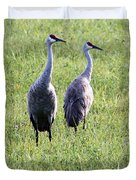 Sandhill Cranes In Wisconsin Duvet Cover