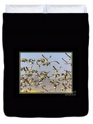 Sandhill Cranes Startled 2 Duvet Cover