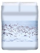 Sandpiper Abstract Duvet Cover