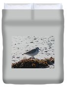 Sandpiper And Seaweed Duvet Cover