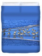 Sandpiper Symmetry Duvet Cover