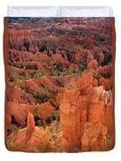Sandstone Hoodoos At Sunrise Bryce Canyon National Park Utah Duvet Cover