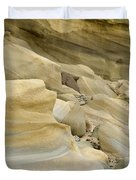 Sandstone Sediment Smoothed And Rounded By Water Duvet Cover