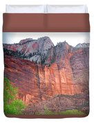 Sandstone Wall In Zion Duvet Cover by Robert Bales