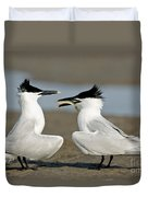Sandwich Tern Offering Fish Duvet Cover
