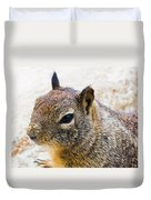Sandy Nose Squirrel Duvet Cover