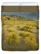 Sangre De Cristo Mountains At Great Duvet Cover