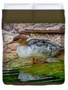 Scaly-sided Merganser Hen Duvet Cover