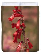 Scarlet Colorado Penstemons Duvet Cover