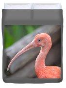 Scarlet Ibis 1 Duvet Cover
