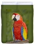 Scarlet Macaw Parrot Duvet Cover