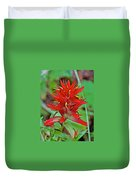 Scarlet Paintbrush On Trail To Swan Lake In Grand Teton National Park-wyoming- Duvet Cover