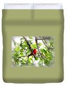 Scarlet Tanager - 11 Duvet Cover