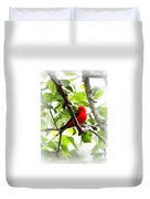 Scarlet Tanager - 19 Duvet Cover