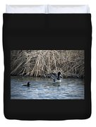Scaup Show Off Duvet Cover