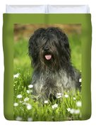 Schapendoes, Or Dutch Sheepdog Duvet Cover