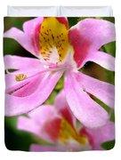 Schizanthus Named Angel Wings Duvet Cover