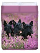 Scottish Terrier Dogs Duvet Cover