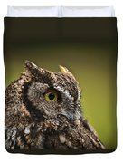 Screech Owl 1 Duvet Cover