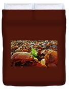 Sea Glass And Shells 16 10/2 Duvet Cover