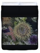 Sea Life Duvet Cover
