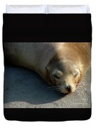 Sea Lion-00178 Duvet Cover