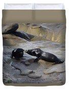 Sea Lion Kiss  Duvet Cover